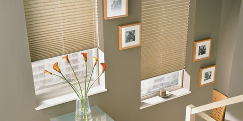Pleated Blinds 3