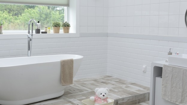 bathroom blind